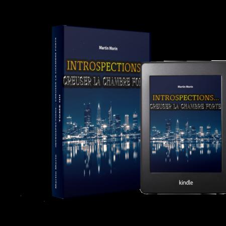 TOME 3 - Introspections Creuser la chambre forte. Une histoire d'introspection moderne et innovante au coeur du développement interne humain.
